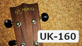 初めて買ったウクレレ「AlaMoana UK-160」を今さらレビュー